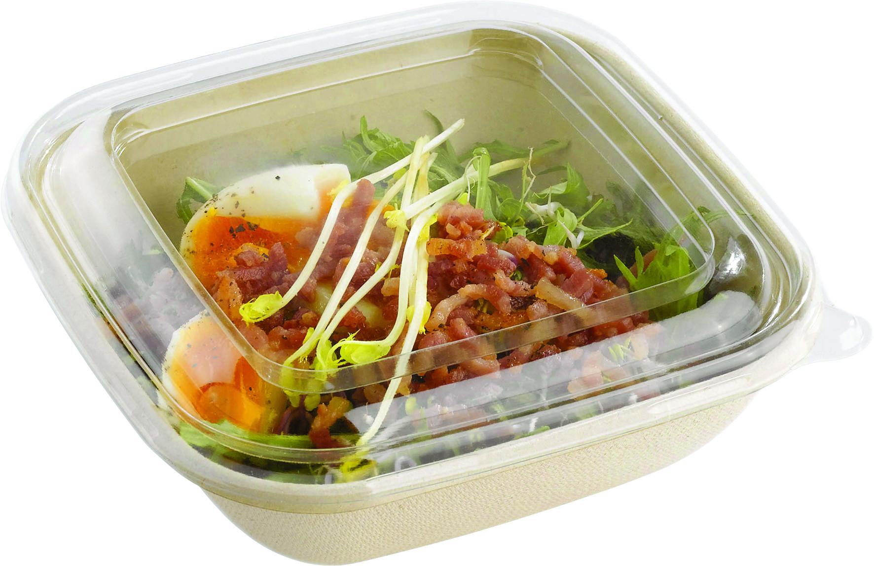 Venta de Tapa cuadrada para envase biodegradable de caña de azúcar