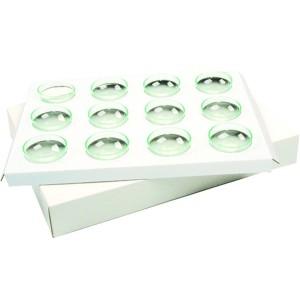 Comprar Carton con 12 Alveolos