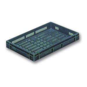 Caja de Plástico Apilable