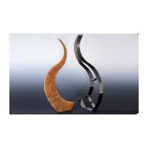 Comprar Molde Cortamasa con Forma de Llama de Acero inoxidable