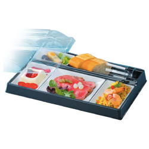 Comprar Kit bandeja de plástico con 5 compartimentos (20 ud)