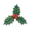 Comprar Hoja Decoración de Navidad Verde Profesional