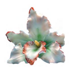 Comprar Orquidea Blanca Decoración