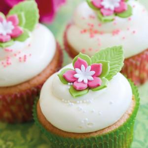 Preparado para Cupcakes Sin Gluten 500 gr. FunCakes
