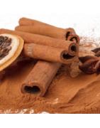 Aromas alimentarios Profesionales