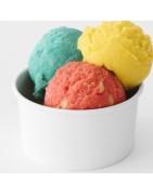 Compra recipientes de helado profesionales para tu negocio