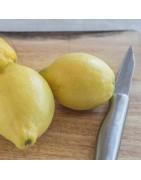 Cuchillos para fruta Profesionales